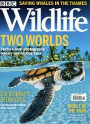 BBC Wildlife